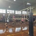 Anson's volleyball team loses senior night game