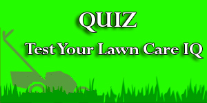 Test Your Lawn Care IQ
